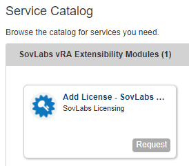 New Add License catalog item appears